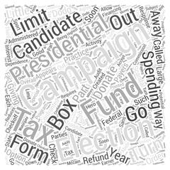 Should We Do Away With the Presidential Election Campaign Fund word cloud concep Stock Illustration
