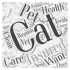 The Cat Care and Health Insurance Know Hows word cloud concept Stock Illustration