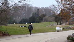 Man in winter coat walks in botanical gardens, Berlin, Germany Stock Footage