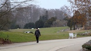 Man in winter coat walks in botanical gardens, Berlin, Germany Stock Footage