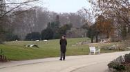 German man walks in botanical gardens, winter, Berlin, Germany Stock Footage