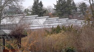 Greenhouse in botanical gardens, Berlin, Germany Stock Footage