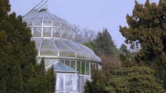 Large greenhouse at Berlin botanical gardens, Germany Stock Footage