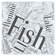 Fly Fishing around Canada word cloud concept Stock Illustration