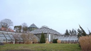Small greenhouses in Berlin botanical gardens, Germany Stock Footage