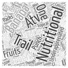 Nutritional snacks for the ATV trail word cloud concept Stock Illustration