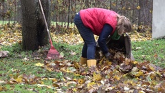 Woman stuff dry leaves into material sack in house backyard. Zoom in. 4K Stock Footage