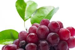 Red Grapes on white acrylic Stock Photos