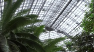 Huge greenhouse roof, botanical garden tropical lush plants, Berlin, Germany Stock Footage