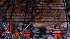 Pieces of meat in the grill roasting on coals Stock Footage