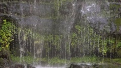 Detail of a cloudforest waterfall in slow motion Stock Footage