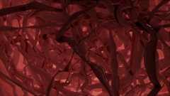 Brain or body parts internals Stock Footage