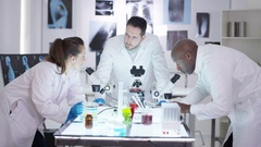 4K Medical research team in the lab, analyzing samples under microscopes Stock Footage