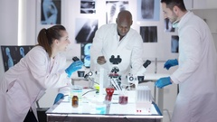 4K Happy medical research team make a discovery in the lab Stock Footage