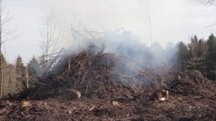 Scrub burning forest fire in England Stock Footage