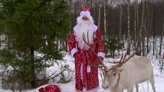 Santa Claus and reindeer in winter forest congrats kids on camera Stock Footage