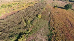Poland in Europe countryside aerial drone shot Stock Footage