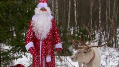 Man in red Santa Claus costume hold reindeer by reins and speaking on camera Stock Footage