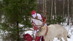 Santa Claus feeding reindeer with a big antlers in the forest and talking Stock Footage