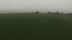 4K Aerial Drone Foggy Pasture and Coastline Stock Footage