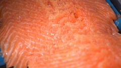 Machine for automatic cutting fish slicing fillet of salmon. Close up. Stock Footage