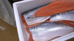 Work puts salmon fillets in a box on the fish factory. Stock Footage