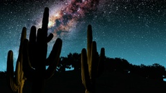 Cactuses and Milky Way stars at night. Elements of this image furnished by NASA Stock Footage