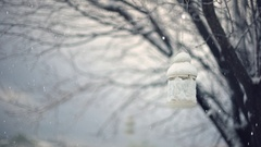 White lantern hanged on a tree branch snow-covered in winter. Snowing. Stock Footage