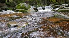 Beautiful mountain brook in Karkonoski National Park, Poland Stock Footage
