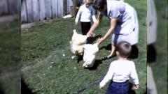 Farm Family Kids People Killing Organic Chickens Vintage Film Home Movie  Stock Footage