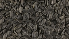 Slow rotation of the heap of sunflower seeds Stock Footage