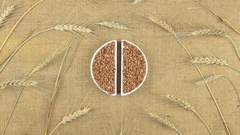 Zoom dish with buckwheat grains and spikelets of wheat lying on sackcloth Stock Footage