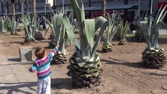 Child comes up and greets aloe Stock Footage