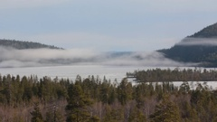 Morning, fog over spring forest, over lake and fells Stock Footage