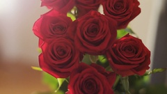 A Bouquet of Red Roses Stock Footage