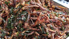 Edible roasted and spiced meal grasshoppers. Street food in Thailand Stock Footage