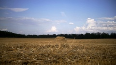 Children run across the field to race, boy climbs up a haystack and rejoices Stock Footage