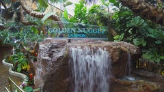 Waterfall And Garden Inside Golden Nugget Lobby- Laughlin NV Stock Footage