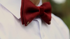 Male groom wedding image with the butterfly. The butterfly is sewn to the little Stock Footage