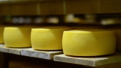 Making Cheese In Factory Stock Footage