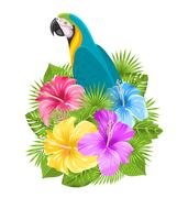 Parrot Ara, Colorful Hibiscus Flowers Blossom and Tropical Leaves Piirros