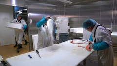 Room for cutting fish at the fish factory. Workers bring and slicing salmon. Stock Footage