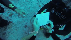 Divers underwater with aqualungs. Blue ocean. Deepness. Fill in documents Stock Footage