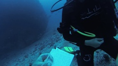 Group of divers underwater with aqualungs. Deepness. Fill in documents. Smile Stock Footage