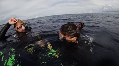 Divers swim in ocean after surfacing from depth. Scubadiving. Happiness Stock Footage