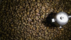 Freshly roasted coffee beans being emptied from cooling tray with mixer Stock Footage