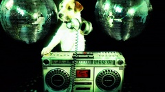 Dog disco puppy animal pet ghettoblaster party music doggy Stock Footage