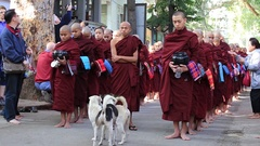 Buddhist monks procession in monastery.  Mandalay, Myanmar, Burma Stock Footage