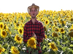 Agriculturist Man Talking Sunflower Field Organic Farming Agriculture Concept Stock Footage