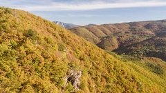 Drone Footage Shot Of Beautiful Trees And Mountain During Autumn Landscape Stock Footage